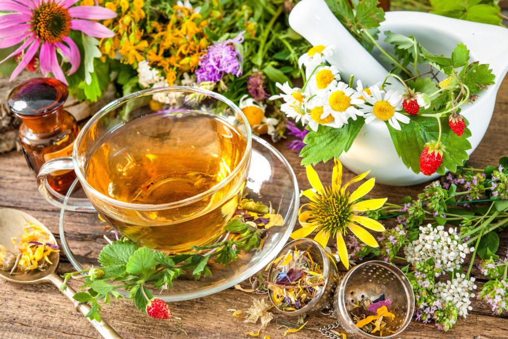 исполнят и зготовление травеного чая развлечения